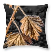 Frosted Flake Throw Pillow
