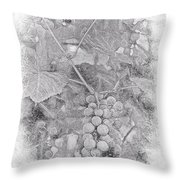 Frosted Grapes Vignette Throw Pillow