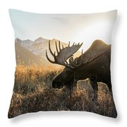 Frosted Grass For Breakfast Throw Pillow