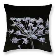 Frosted Hogweed Throw Pillow