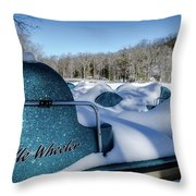Frosted Paddleboats Throw Pillow
