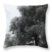 Frosted Pine Throw Pillow