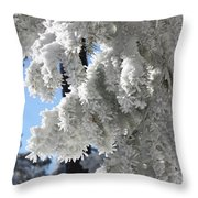 Frosted Pine Needles Throw Pillow