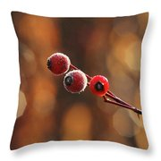 Frosted Rose Hips Throw Pillow