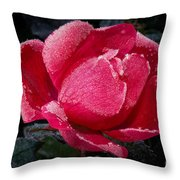 Frosted Rose Throw Pillow