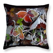 Frosted Strawberries Throw Pillow