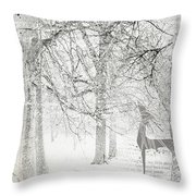 Frosted Winter Throw Pillow