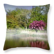 Spring Frosting Throw Pillow