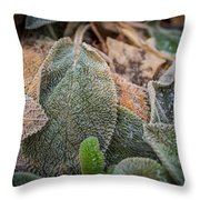 Frosty 3 Throw Pillow