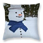 Frosty Alaskan Throw Pillow