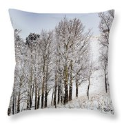 Frosty Aspen Trees Throw Pillow