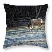 Frosty Autumn Morning Throw Pillow