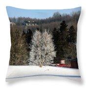 Frosty Birch Throw Pillow