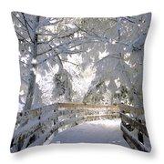 Frosty Boardwalk Throw Pillow