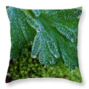 Frosty Dewdrops Throw Pillow