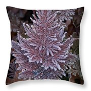 Frosty Fern Christmas Throw Pillow
