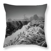 Frosty Field Throw Pillow