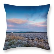 Frosty Fields Throw Pillow