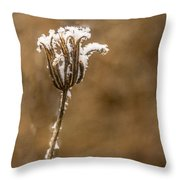 Frosty Flower Remains Throw Pillow