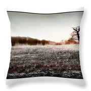 Frosty Landscape Throw Pillow