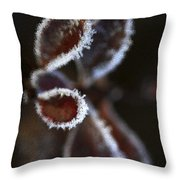 Frosty Leafs Throw Pillow