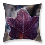 Frosty Lighted Leaf Throw Pillow