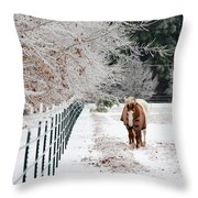 Frosty Mare Throw Pillow