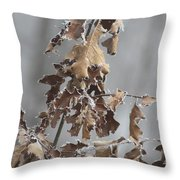 Frosty Morning 2 Throw Pillow