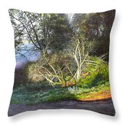 Frosty Morning Near Nant Clwyd, North Wales Throw Pillow