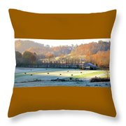 Frosty Morning On The Farm Throw Pillow
