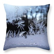 Frosty Morning Window Throw Pillow