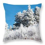 Frosty Mountainside Throw Pillow