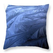 Frosty Palm Tree Fronds On Car Trunk Throw Pillow