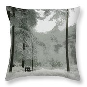 Frosty Paradise Throw Pillow