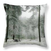 Frosty Paradise Throw Pillow