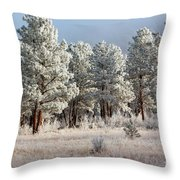 Frosty Pikes National Forest Throw Pillow