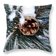 Frosty Pine Cone Throw Pillow