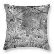 Frosty Pine Tree Throw Pillow