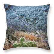 Frosty Prickly Pear Throw Pillow