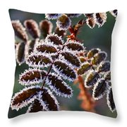 Frosty Rose Leaves Throw Pillow