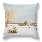 Frosty Solitude Tree In The First Morning Sunshine Throw Pillow