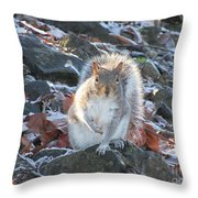 Frosty Squirrel Throw Pillow