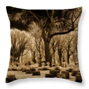 Frosty Tops Throw Pillow