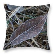 Frosty Veined Leaf Throw Pillow