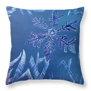 Frosty Window Throw Pillow