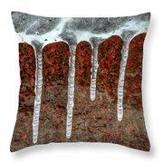 Frozen Along Her Shores Throw Pillow