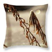 Frozen And Fragile - No. 1 Throw Pillow