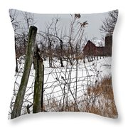 Frozen Apples Throw Pillow by Stephanie Calhoun