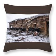 Frozen Beef Throw Pillow