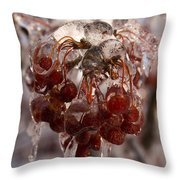 Frozen Berries Throw Pillow